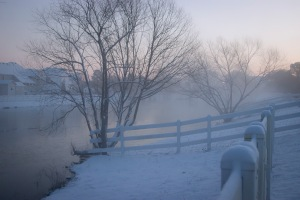 Snowy Day_0001