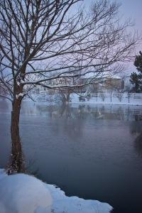 Snowy Day_0003