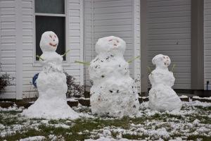 Snowy Day_0061