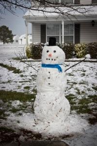 Snowy Day_0101