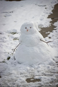 Snowy Day_0104