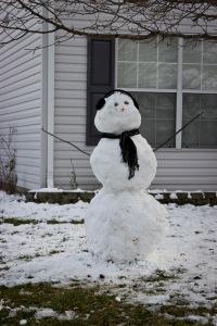Snowy Day_0107