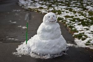Snowy Day_0109