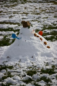 Snowy Day_0111