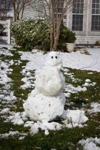 Snowy Day_0112