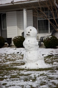 Snowy Day_0118
