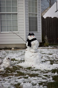Snowy Day_0119