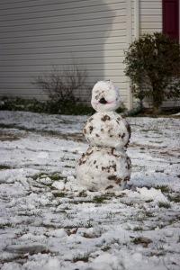 Snowy Day_0120