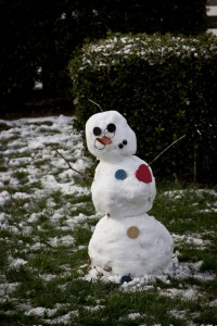 Snowy Day_0128