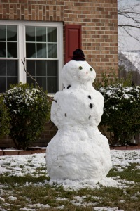 Snowy Day_0129