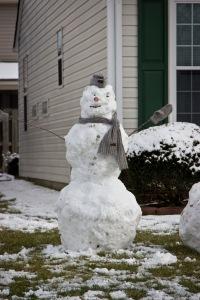 Snowy Day_0130