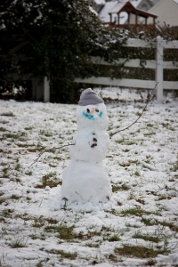 Snowy Day_0132