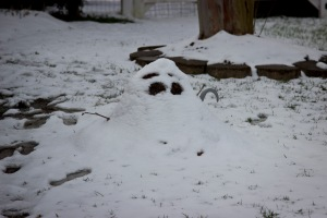 Snowy Day_0138