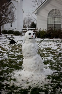 Snowy Day_0139