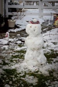 Snowy Day_0144